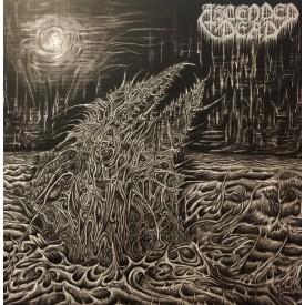 Ascended dead - Abhorrent manifestation LP