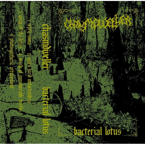 Chasmdweller - Bacterial lotus  Cass