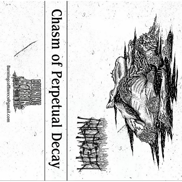 Defecatory - Chasm of Perpetual Decay  Cass