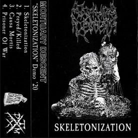 Mortuary descent - Skeletonization  Cass