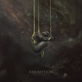 Assumption - Absconditus MLP