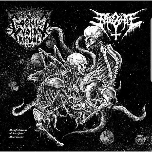 """Cosmic void ritual / Fetid zombie  - split 7"""""""