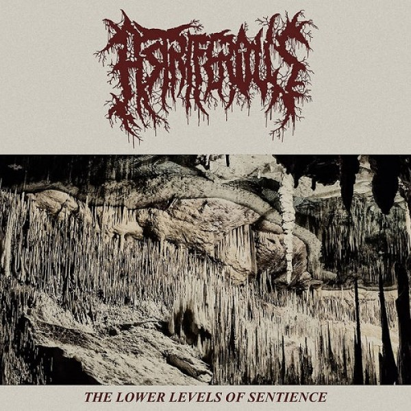 Astriferous - The lower levels of sentience LP