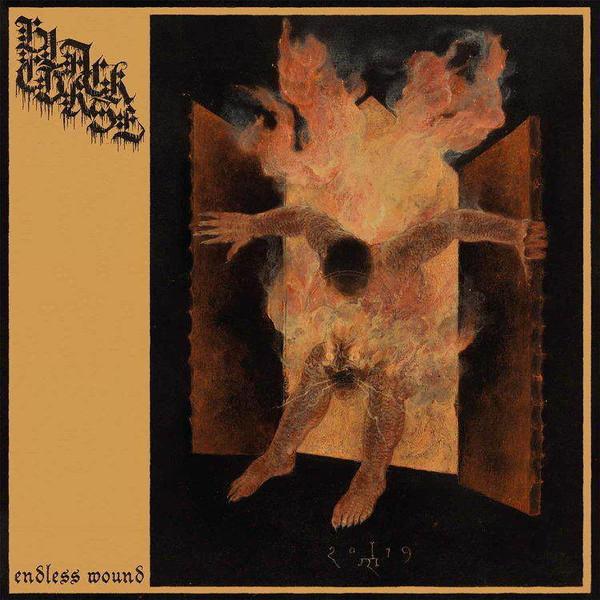Black curse - Endless wound CD