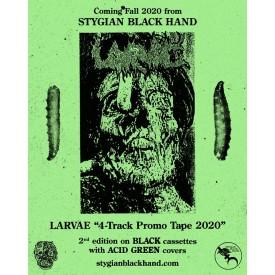 Larvae - 4 track promo tape 2020