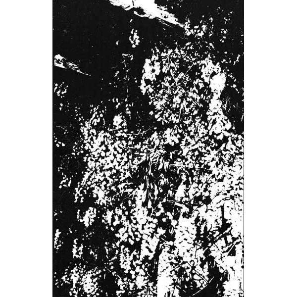 Enshroud/Lipitoare  - split Cass