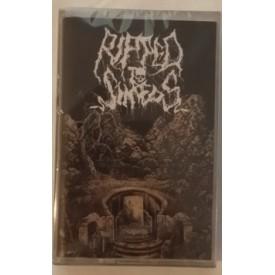 Ripped to shreds - 埋葬  Cass