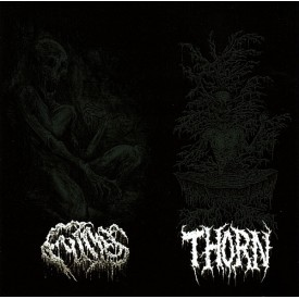 Fumes / Thorn - Split CD