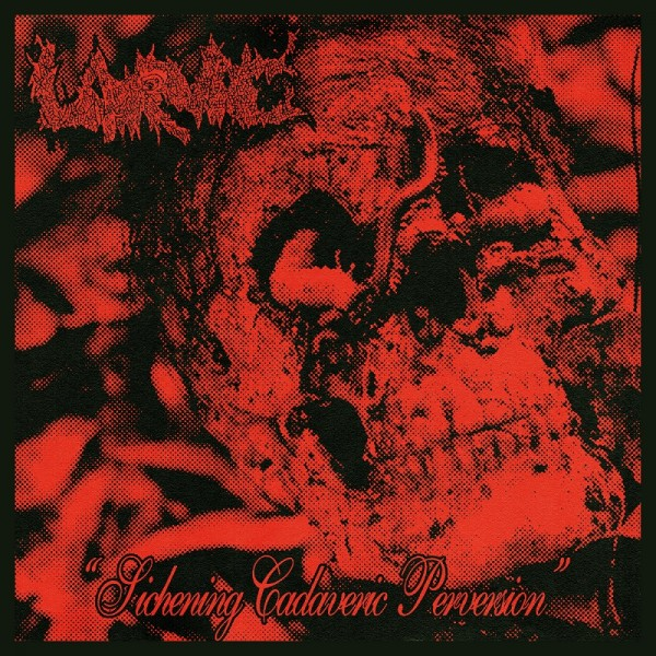 "Larvae - Sickening cadaveric perversion  7""  (Black / red)   (Pre order)"